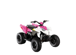 2013 Polaris Sportsman 90
